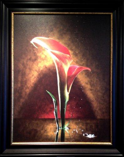 double-blossom-calla-lily