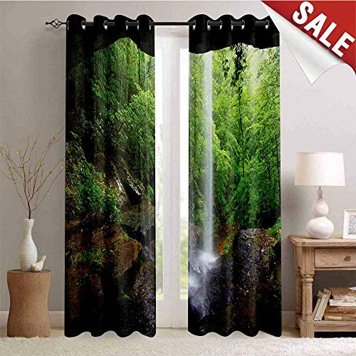 Natural Cave, Drapes for Living Room, Still Waterfall in The Forest in Northern Alabama Habitat Ecosystem Scenery, Window Curtain Fabric, W72 x L96 Inch Green Brown ()
