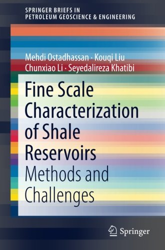 Fine Scale Characterization of Shale Reservoirs: Methods and Challenges (SpringerBriefs in Petroleum Geoscience & Engineering)