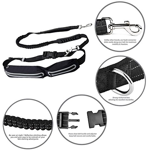 Filoto Retractable Hands Free Dog Leash Dog Leashes with Adjustable Running Belt - Suitable for Medium to Large Dogs by Filoto