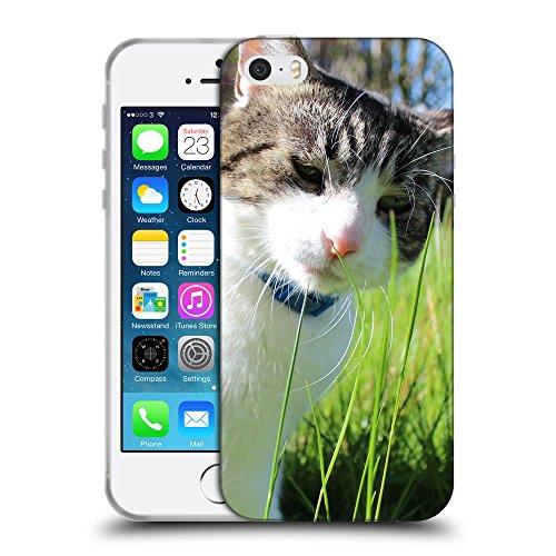 Just Phone Cases Coque de Protection TPU Silicone Case pour // V00004296 chat triste avec col bleu // Apple iPhone 5 5S 5G SE