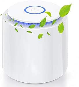 Purificador de Aire Portátil, Mini Filtro de aire USB con Filtro HEPA/Carbón Activado/Función Aromaterapia/2 Modos/Luz Nocturna para Hogar,Oficina Eliminar Polvo, Polen, Humo, olor,PM2.5