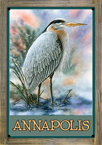 Northwest Art Mall Annapolis Great Blue Heron Metal Print on Reclaimed Barn Wood by Dave Bartholet (12