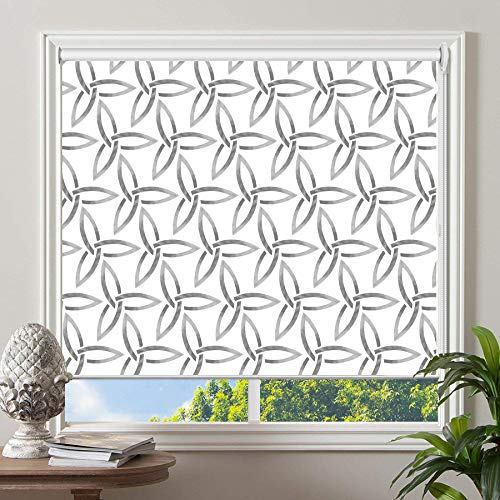 PASSENGER PIGEON Blackout Window Shades, Premium UV Protection Water Proof Custom Roller Blinds, Printed Picture Window Roller Shade, 66″ W x 72″ L, JIHE-2