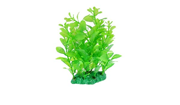 Amazon.com : eDealMax Plantas plástico pecera decoración de agua, 13cm, Verde : Pet Supplies