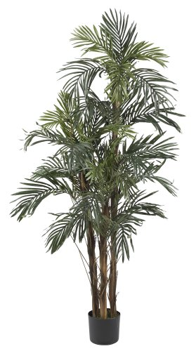 Nearly Natural 5283 Robellini Palm Silk Tree, 5-Feet, Green