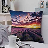 Fbdace Square Lumbar Cushion Cover Lavender Agriculture Aromatherapy Super Soft and Luxury, Hidden Zipper Design 14 X 14 Inch