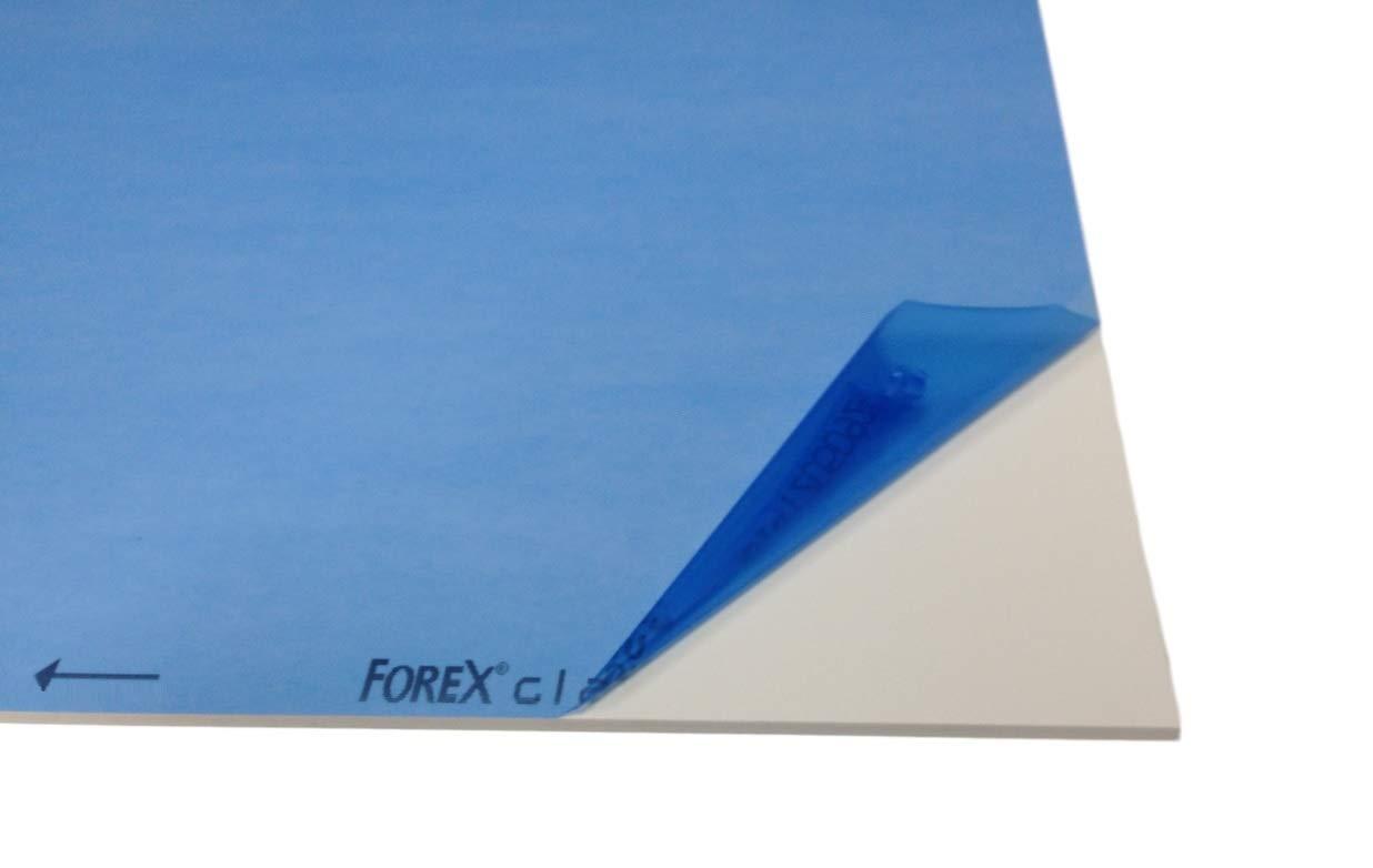 Messewand 10,0 mm Forex /® classic weiss Hartschaum Universalplatte f/ür alle Display-Anwendungen 1220 x 610 mm