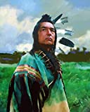 Oil Painting On Canvas Kicking Bird Dances With Wolves Native American Art 24 x 30 UnFramed