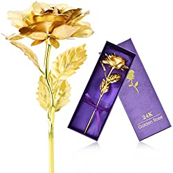 "ZJchao Gold Foil Rose Flowers 10"" Long Stem Artificial Flowers for Women Birthday Gift (Gold2)"