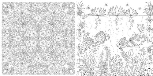 Animal Kingdom Colouring Book Pictures Secret Garden An Inky Treasure Hunt And Coloring