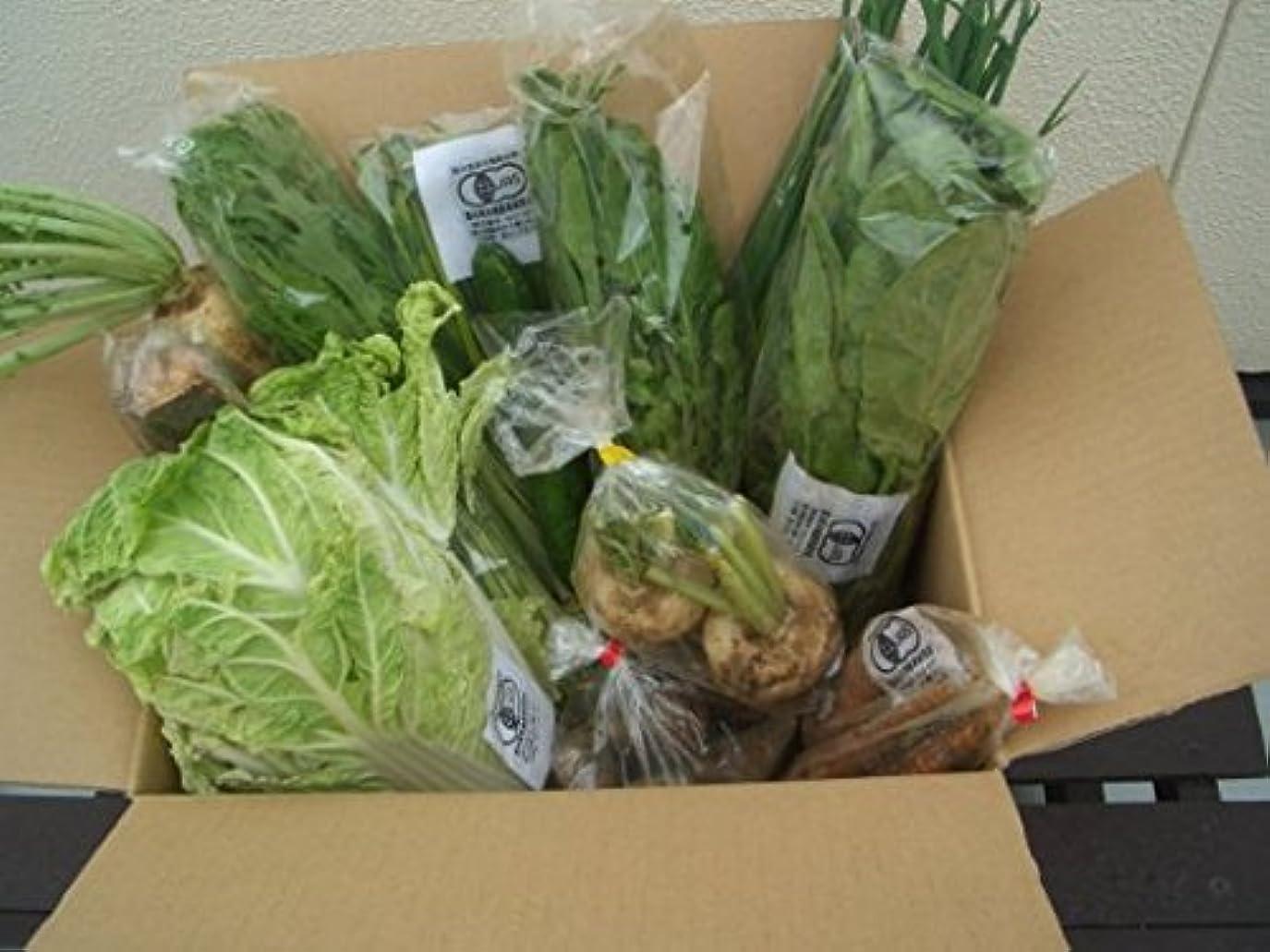 帰するライオンケージ有機?無農薬栽培野菜と安心果物セット