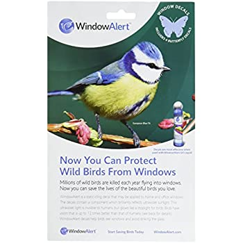 Amazoncom Window Alert Square Shape Decals Bird Repellents - Window alert decals amazon