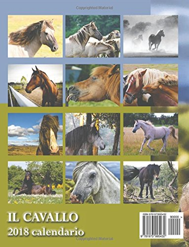 Il Cavallo 2018 Calendario (Edizione Italia) (Italian Edition) by Createspace Independent Publishing Platform