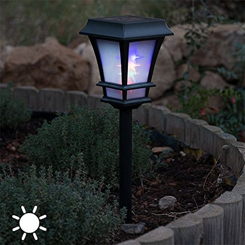 Lámpara solar exterior para el jardín. Ideal para el patio o terraza. Proporciona una magnifica iluminación exterior.Decoración. 4 LED + BATERIA: Amazon.es: Iluminación