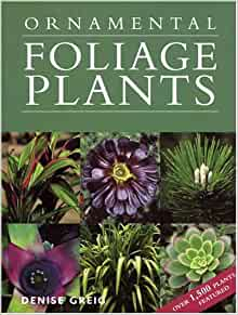Ornamental Foliage Plants Denise Greig 9781554070176 Amazon Com