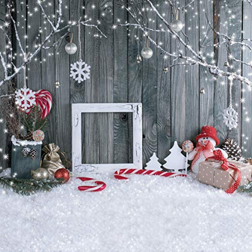 10x10ft Christmas Photography Backdrops Wood Photo Background Winter Snowflake Landscape Photo Backdrop for Christmas Party Decoration Studio Props SDJ-207 (Photos Landscape Winter Christmas)