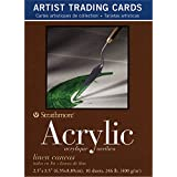 Strathmore Artist Trading Cards 2 1/2 in. x 3 1/2 in. 400 series Acrylic Pack 10 cards