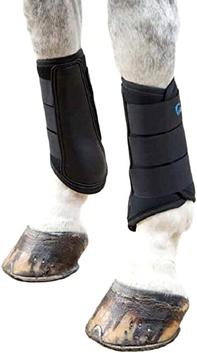 Neoprene Lightweight Leg Wraps/Guards (Horse Brushing Boots) [Shires] Picture