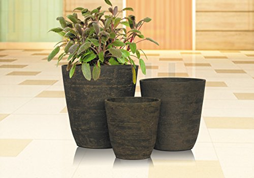 Stone Light Antique AT Series Cast Stone Planter (Pack of 6), 11 by 11.5'', Sandal Wood by Stone Light (Image #2)