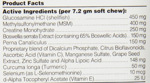 Synovi-G4-soft-chew-240-count