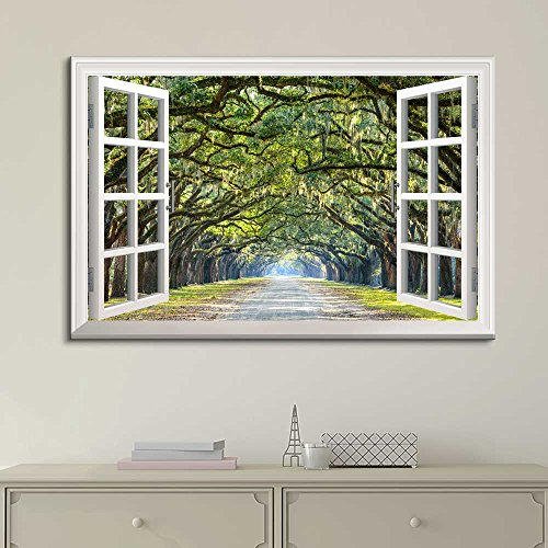 White Window Looking Out Into a Road with a Tunel of Trees