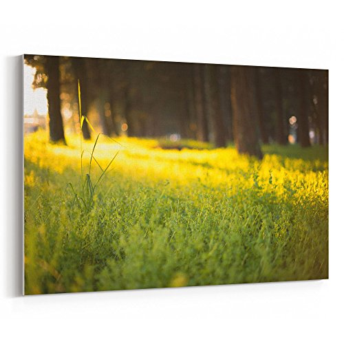 Westlake Art - Canvas Print Wall Art - Yellow Green on Canvas Stretched Gallery Wrap - Modern Picture Photography Artwork - Ready to Hang - 18x12 (f30 0db)