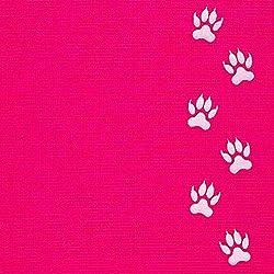 Cartera de teléfono Gecko - Soporte para teléfono - Tarjetero adhesivo para celular - Bolsa de teléfono - Bolsillo para teléfono de Lycra - Portador de tarjetas de crédito y efectivo (Pata de gato en rosa)
