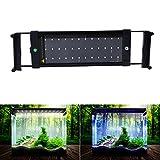 tank hood 40 - NONMON LED Aquarium Lights, Fish Tank Light Hood with Extendable Brackets, White and Blue LEDs 28cm/11inch