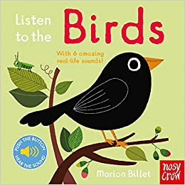 Listen to the Birds: Amazon co uk: Marion Billet: 9780857638656: Books