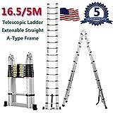 Yiya Aluminum Telescopic Extension Ladder