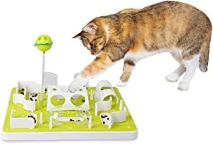 All for Paws Interactives Cat Treat Maze Toy Cat Food Dispenser Kitty Puzzle Feeder Catnip Toy Cat Wand Toy Cat Fun Playing Toys Kitten Toys