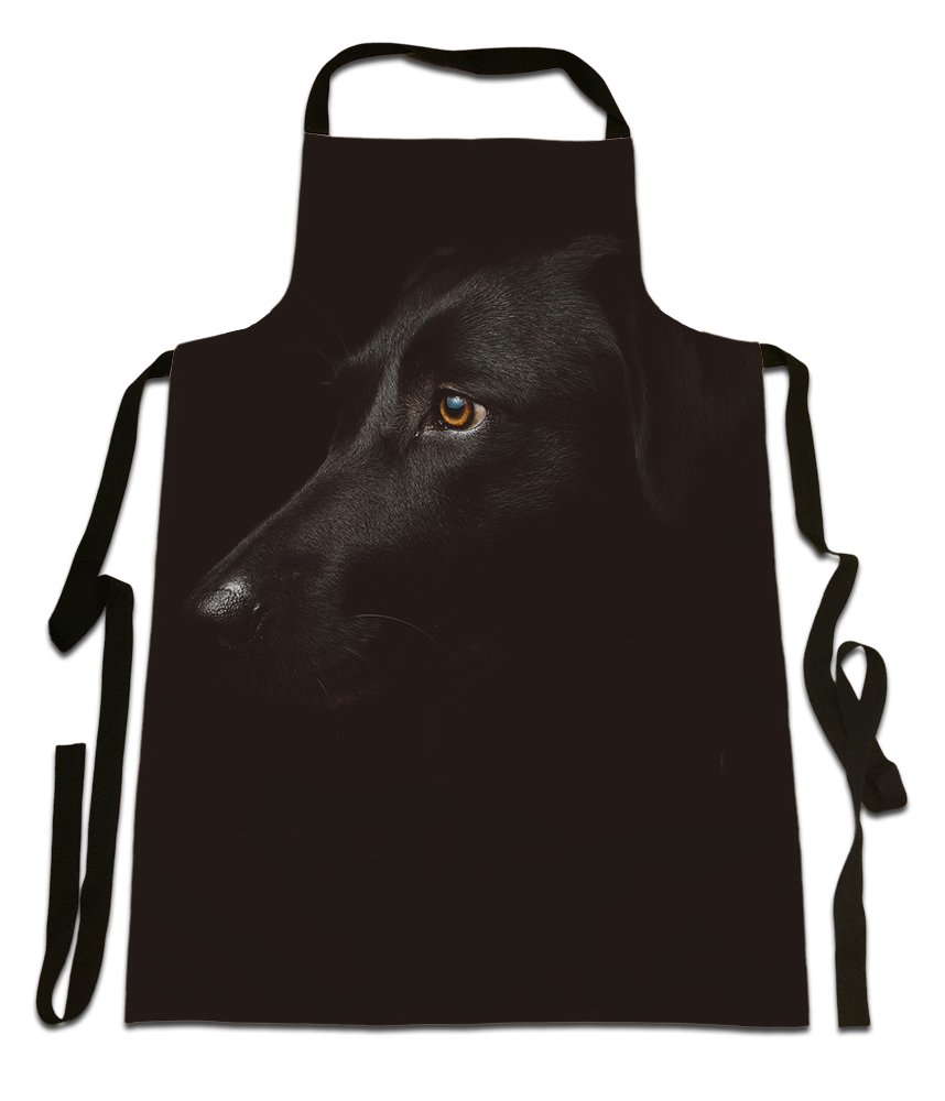 Black Labrador, Photographic Image, Canvas Apron, Size 25in x 35in approximately Fresh Publishing Ltd