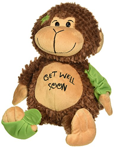 - 15 Inch Get Well Soon Signature Monkey