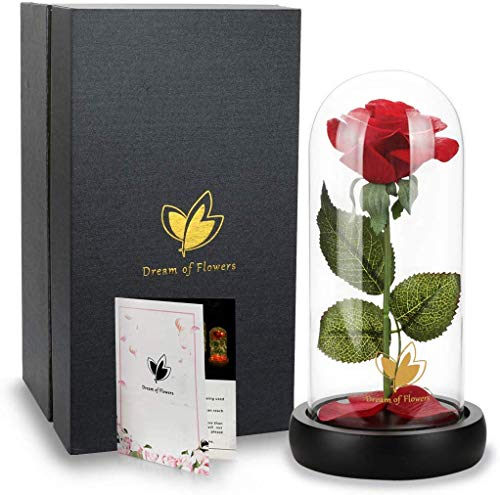 Beauty and The Beast Rose, red Silk Rose in Glass Dome Falling Petals and Wooden Pedestal in Glass Dome, Anniversary (N3)