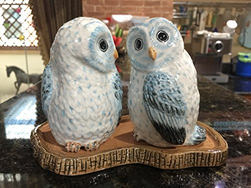 [Cute Big Ceramic White Owl Salt and Pepper Shakers Set Hand Painted] (Eggshell Costume For Adults)