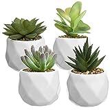 MyGift - Juego de 4 macetas de cerámica facetadas con ventosas Artificiales
