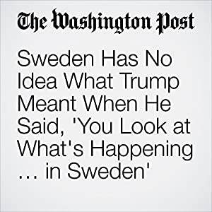 Sweden Has No Idea What Trump Meant When He Said, 'You Look at What's Happening … in Sweden'