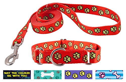 Country Brook Design Red Busy Paws Martingale Dog Collar & Leash - (Top Paw Adjustable Dog Collar)
