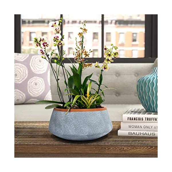 Large Succulent Planter Pots Ceramic Indoor Outdoor Garden Pot With Drainage For Plant Flower 8 Inch Gray