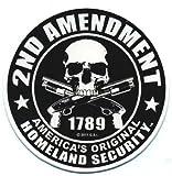 Motorcycle Helmet Sticker - 2nd Amendment America's Original Homeland Security