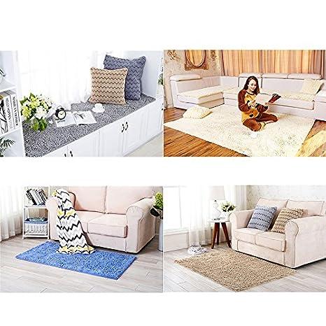 WDDH Bath Mats Pet Square Soft Non-Slip Machine Washable Absorbent Door Carpet