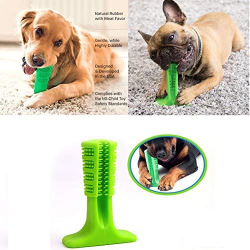 FEIDAjdzf Juguete para Mascota, Forma de Hueso, Cepillo de Dientes para Perro, Cepillo de Dientes, Cepillo de Dientes Limpiador de Dientes Cachorros ...