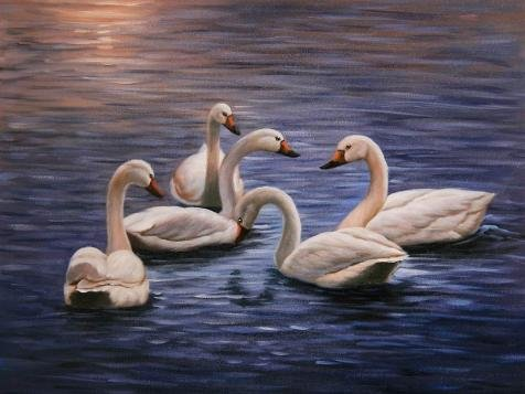 'White Swans In The Blue Lake' Oil Painting, 10x13 Inch / 25x34 Cm ,printed On High Quality Polyster Canvas ,this Replica Art DecorativeCanvas Prints Is Perfectly Suitalbe For Study Gallery Art And Home Artwork And Gifts (Matte White Floor Model)