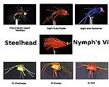 Dream Drift Flies Steelhead Nymph's VI Fly Kit