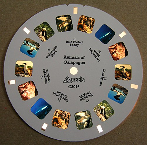 Animals of Galapagos - Classic ViewMaster - 2 Reel Set - NEW by 3Dstereo ViewMaster (Image #3)