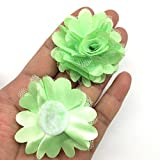 PEPPERLONELY 10PC Set Lime Lace Chiffon Peony Fabric Flowers, 2 Inch