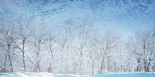 GladsBuy snow cedar 20' x 10' Computer Printed Photography Backdrop Snow Theme Background ACP-427 by GladsBuy