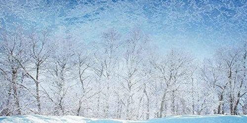 GladsBuy snow cedar 20' x 10' Computer Printed Photography Backdrop Snow Theme Background ACP-427 by GladsBuy