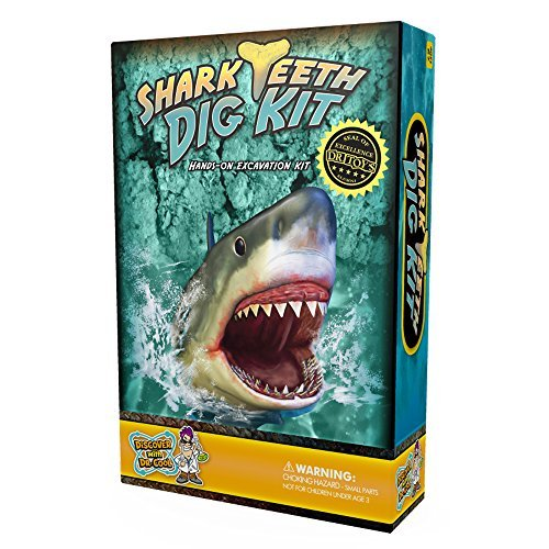 Shark Tooth Dig Kit - Dig Up 3 Real Shark Teeth Fossils! ()